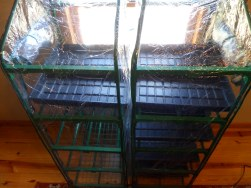Mini GreenHouse Starter